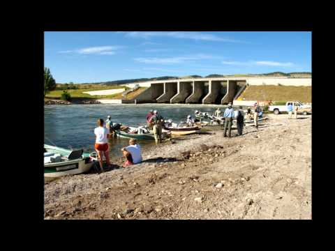 Fly-fishing the Bighorn River