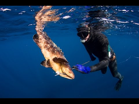 Spearfishing the Aegean