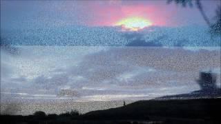 Мария Неделкова - Солнце