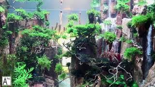 Tranquility: Underwater Waterfall Aquarium