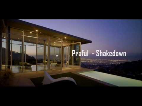 Praful Shakedown