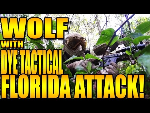 WOLF & DYE ATTACK FLORIDA!