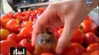 فيديو| انتباه | شاهد ما يحدث في خطوط إنتاج الصلصة والكاتشب بالمصانع الفاسدة