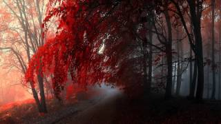 Beautiful Piano Music - Time to Let Go