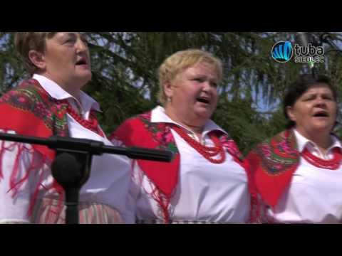Tuba Siedlec -  Festiwalu Kapel Ludowych Pod Siedlcami w Wiśniewie 2017