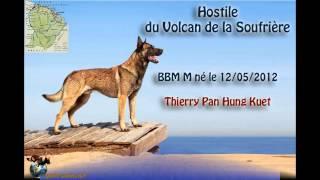 Championnat des Dom-Tom 2015 à Domérat