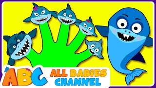 Shark Finger Family | Baby Shark | Finger Family Song And More Kids Songs | All Babies Channel