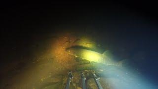 Открытие сезона подводной охоты и рыбалки 2020