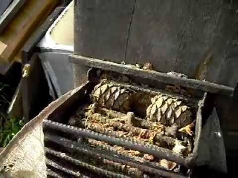 Молотилка для кедрового ореха своими руками