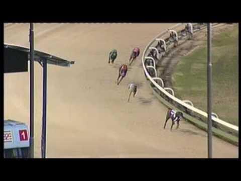 Angle-Park-12012017-Race-9