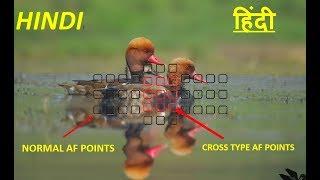 Normal Autofocus Points vs Cross Type Autofocus Points Explained | Phase Detection Autofocus |