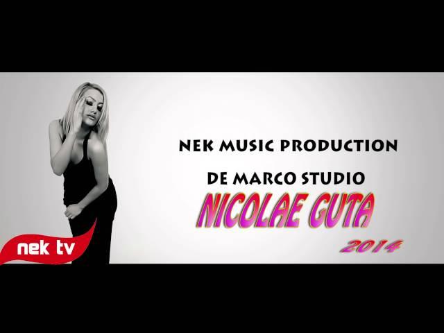 NICOLAE GUTA  - CINE PE LUMEA ASTA REA [OFFICIAL SONG] HIT 2014