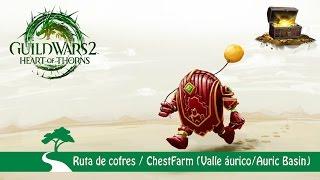 GW2: RUTA DE COFRES (VALLE AURICO)/ CHEST FARM (AURIC BASIN)