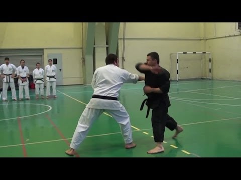 Shorin Ryu Karate Do - Okinawan Kobudo - Self Defense