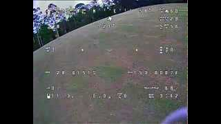 Kyogle Park FPV Flight - Spanky is a little drunk