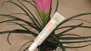 Prepara tu BB cream DIY. EcoDaisy