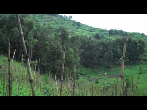 Helping Sustain Agriculture in Africa