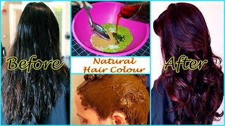 How to colour your Hairs naturally | DIY Natural Hair Colour | 100 % Natural