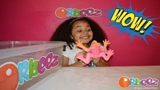 WATER GROWING FROG | Giant Orbeez | Kids Science Review