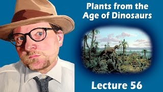 What did Plants look like during the Age of Dinosaurs?