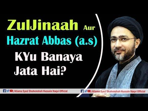 ZulJinaah Aur Hazrat Abbas (a.s) ka Alam Mubarak Kyu Banaya jata hai? best reply