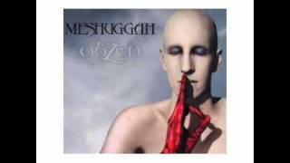 Watch Meshuggah Electric Red video