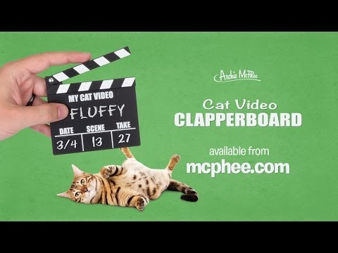 Revolutionary New Production Tool for Viral Hits: Cat Video Clapperboard