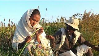 Eritrea - Beraki Gebremedhin - Qedawitey / ቀዳዊተይ - New Eritrean Music 2015