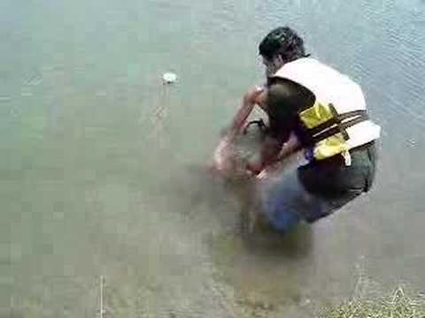 Pesca con arpon parte 2