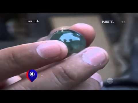 Batu Akik Lidah Buaya Asal Palu - NET12