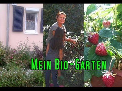 Mein Kleiner Biogarten TEIL 1 - Gemüse, Früchte Und Salate Aus Dem Eigenen Garten CANANS-REZEPTE.COM