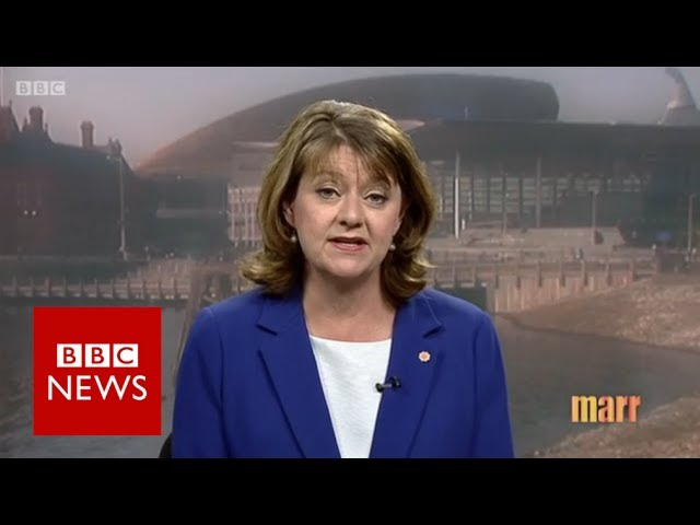 Plaid Cymru leader Leanne Wood calls for more resources for police - BBC