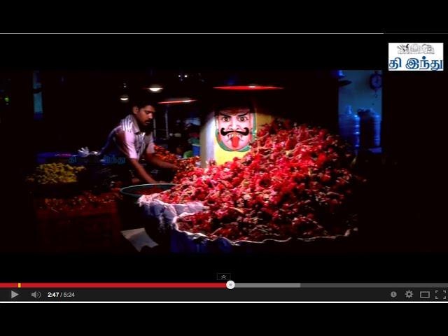 Chennai 375   Special Video   Tamil The Hindu