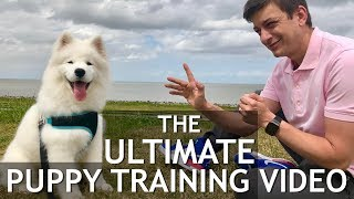 The Ultimate Puppy Training Video! Stop chewing, biting, jumping, leash training, roll over