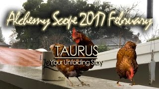 Taurus February 2017 | Alchemy Scope for Evolution