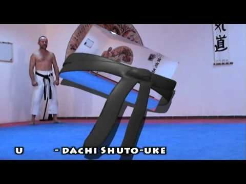 Karate: Kokutsu-dachi video