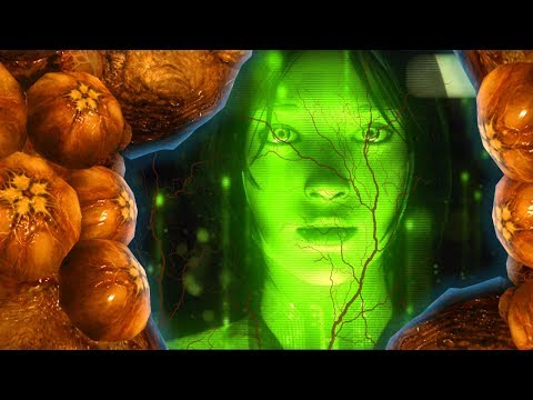 Halo 6 News - CONFIRMED Cortana Infected By the LOGIC PLAGUE!?