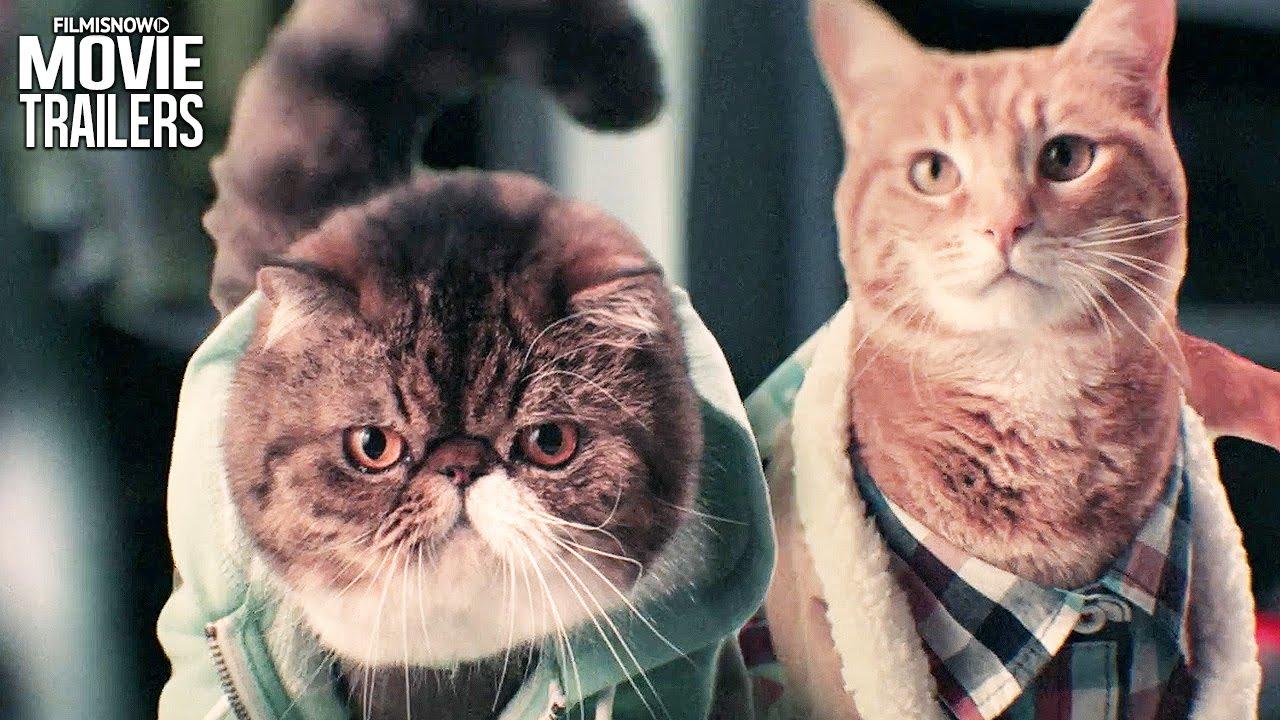The kittens have taken over in the KEANU - Kitten, Please Spoof Trailer [HD]