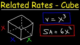 Related Rate Problems - The Cube - Volume, Surface Area & Diagonal Length