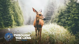 Through The Lens | S02E02 - @fursty