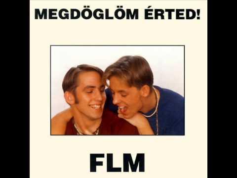FLM - Megdöglöm Érted 1993