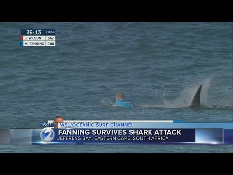 Hawaii surfer eliminated by Mick Fanning reacts to shark attack
