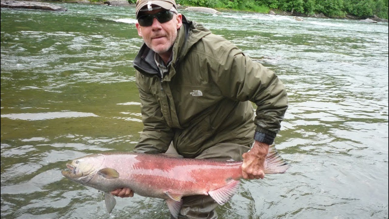 Alaska fly fishing for king salmon youtube for Alaska out of state fishing license
