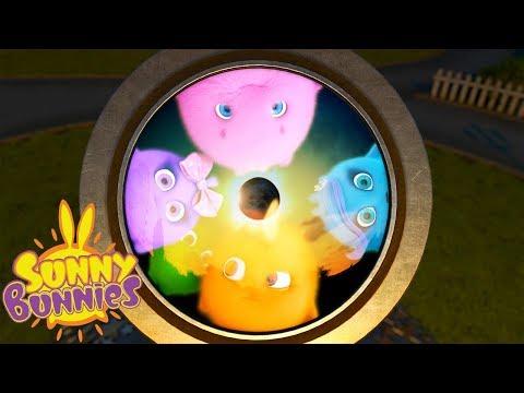 Cartoons for Children | SUNNY BUNNIES - THROUGH THE LENS | Funny Cartoons For Children