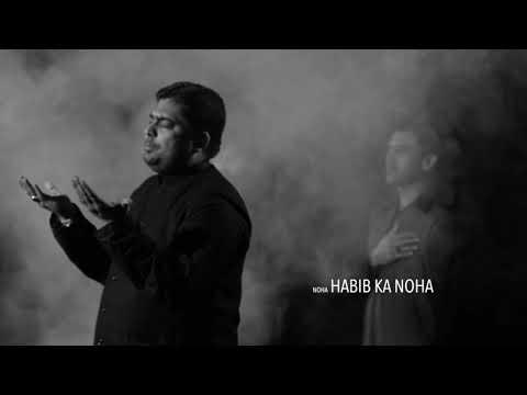 Habib Ka Noha : Syed Kashif Raza - Anjuman Ghulaman-e-Hur ( International ) 2017