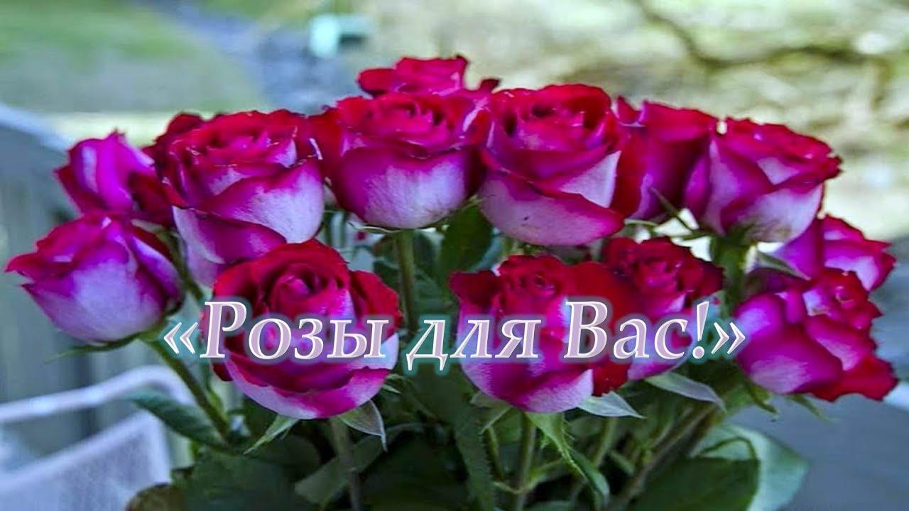 Картинки красивые цветы со смыслом (37 фото) Прикольные 83