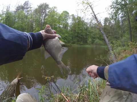 рыбалка на меше на поплавок