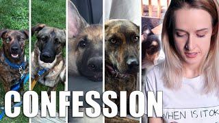 I Adopt Dogs When I'm Sad... *CONFESSION TIME*
