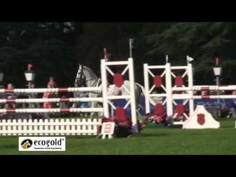 Neil Spratt and Upleadon – Blenheim Horse Trials 2010 – Show Jumping