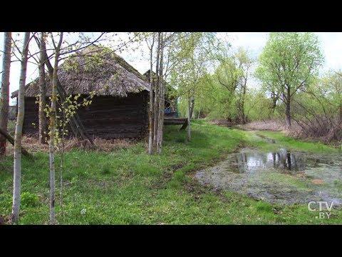 Белорусская Венеция – деревня Кудричи. Уникальная деревня на воде!